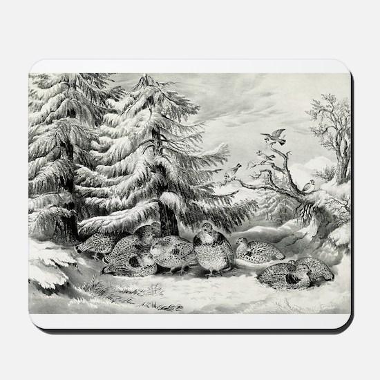 Snowed up - ruffed grouse in winter - 1867 Mousepa