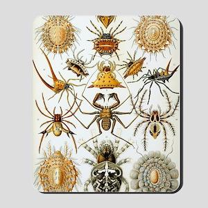 Vintage Spiders Mousepad