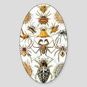 Vintage Spiders Sticker (Oval)