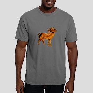 FLOWING RANGE Mens Comfort Colors Shirt
