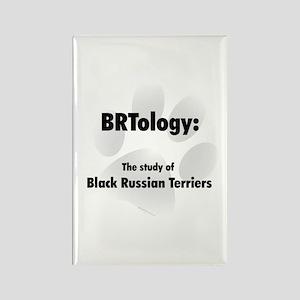 BRTology Rectangle Magnet