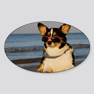 Cool Dog at the Beach Sticker (Oval)