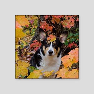 "Cute Corgi in Fall Colors Square Sticker 3"" x 3"""