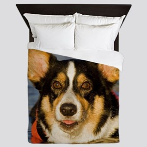 Cute Corgi Queen Duvet