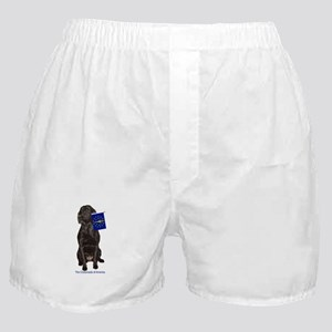 indiana Boxer Shorts