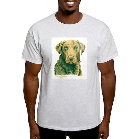 Dead Grass Chesapeake Ash Grey T-Shirt