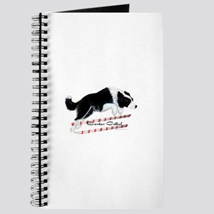 Border Collie Jump Journal