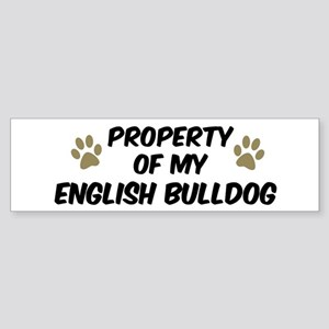English Bulldog: Property of Bumper Sticker