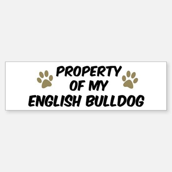 English Bulldog: Property of Bumper Bumper Bumper Sticker