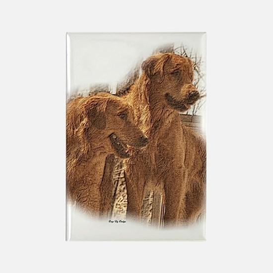 Golden Retriever Art Rectangle Magnet (10 pack)