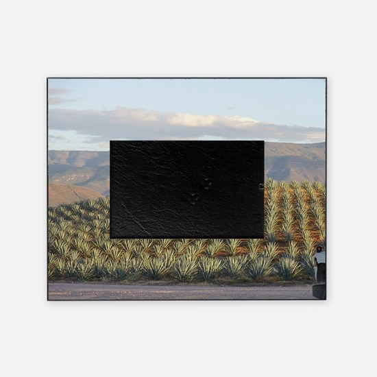 agave hill Picture Frame