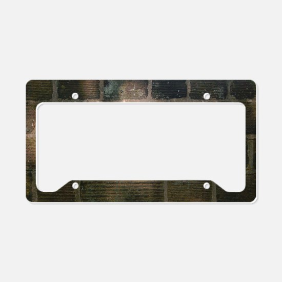 Penny Lane Street Sign License Plate Holder
