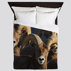 rams Queen Duvet