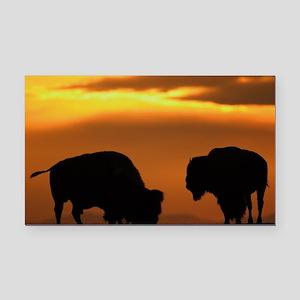 bison sunset Rectangle Car Magnet