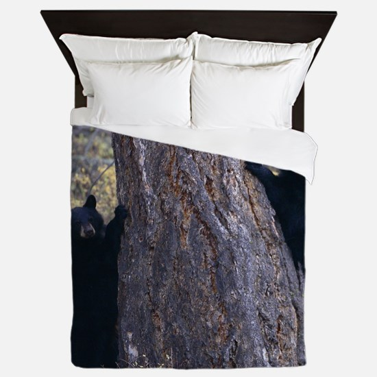 black bear cubs Queen Duvet
