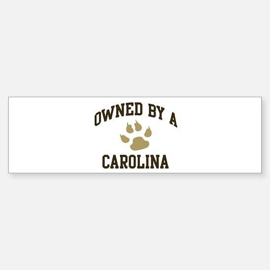 Carolina: Owned Bumper Bumper Bumper Sticker