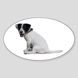 """Jackrussell 1"" Oval Sticker"