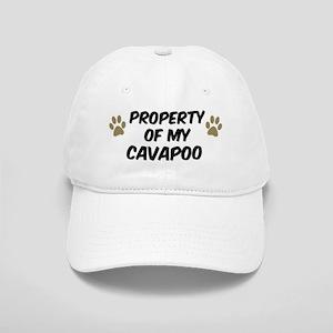 Cavapoo: Property of Cap