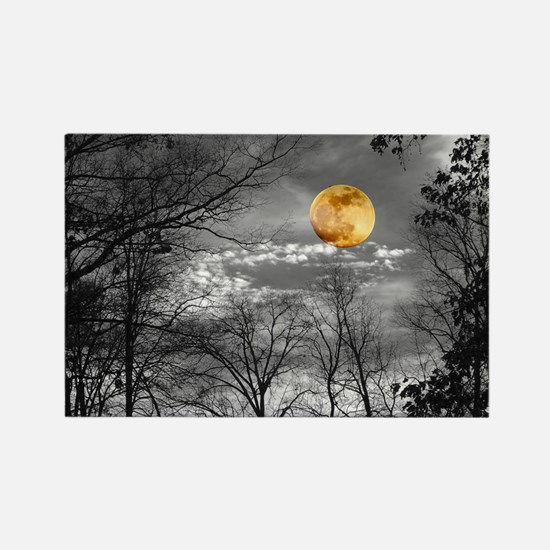 Harvest Moon Rectangle Magnet