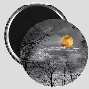 Harvest Moon Magnet