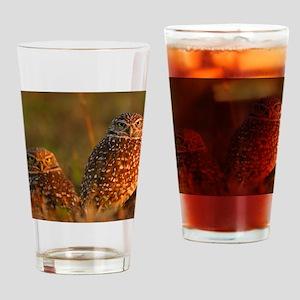 burrowing owl couple Drinking Glass