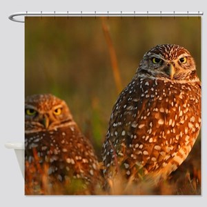 burrowing owl couple Shower Curtain
