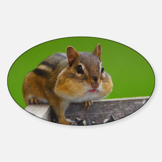 chipmunk Sticker (Oval)