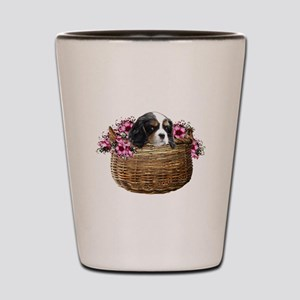 Cavalier King Charles Spaniel in a Basket Shot Gla
