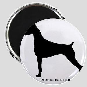 Doberman Rescue  Magnet