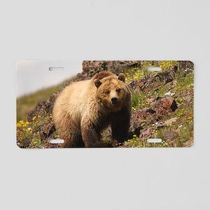 bear Aluminum License Plate