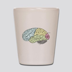 dr brain lrg Shot Glass