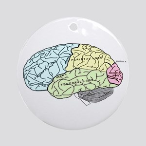 dr brain lrg Ornament (Round)