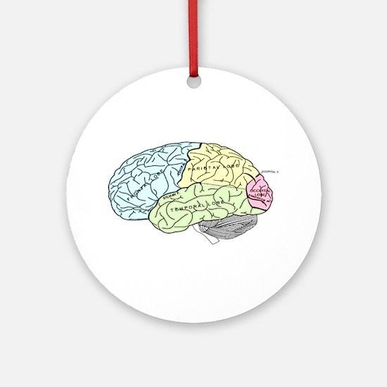 dr brain lrg Ornament (Round)