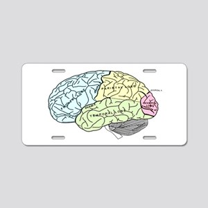 dr brain lrg Aluminum License Plate