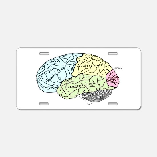 dr brain lrg Aluminum License Plate
