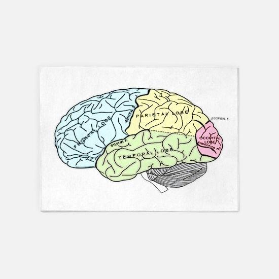 dr brain lrg 5'x7'Area Rug