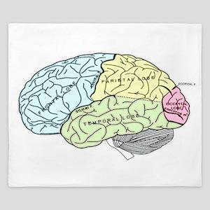 dr brain lrg King Duvet