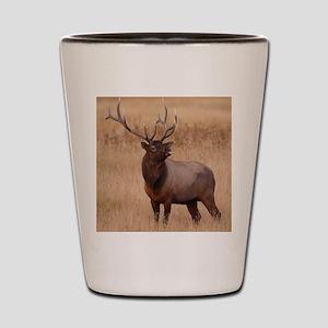 elk raspberry Shot Glass