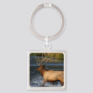 elk splashing in the water Square Keychain