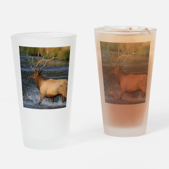 elk splashing in the water Drinking Glass