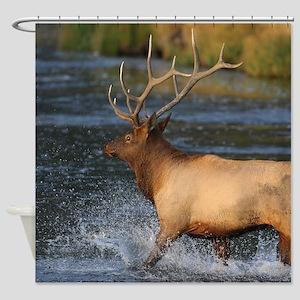 elk splashing in the water Shower Curtain