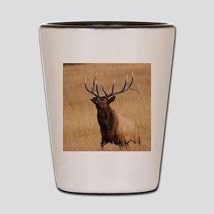 elk charging Shot Glass