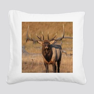 Look at Me! Square Canvas Pillow
