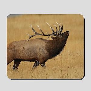 Bull Elk with Head Back Mousepad