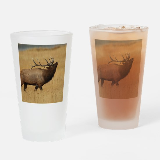 Bull Elk with Head Back Drinking Glass