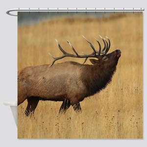 Bull Elk with Head Back Shower Curtain