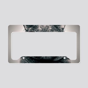 Space cat License Plate Holder