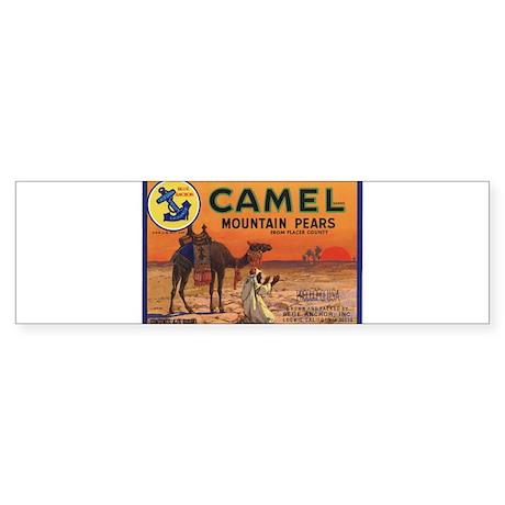 Camel Vintage Fruit Vegetable Crate Label Bumper S