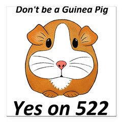 Yes on 522 GMO Labeling Square Car Magnet 3