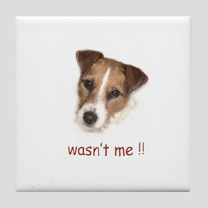 Parson Russell Terrier, Jack Tile Coaster